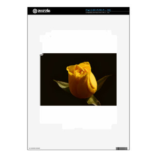 Yellow Roses 11 Skin For iPad 2