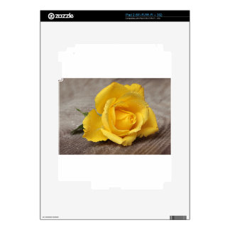 Yellow Roses 13 iPad 2 Skins