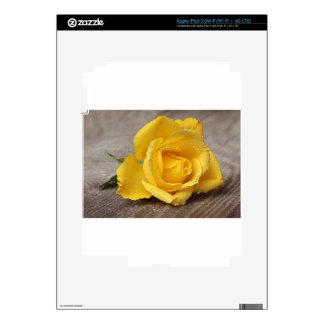 Yellow Roses 13 iPad 3 Skin