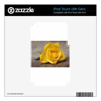 Yellow Roses 13 iPod Touch 4G Decal