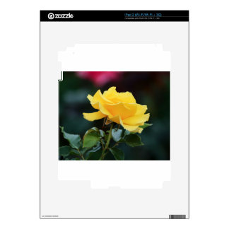 Yellow Roses 7 Skin For The iPad 2