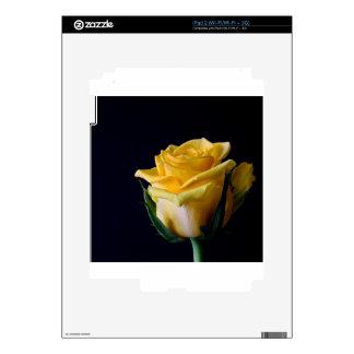 Yellow Roses 9 Skin For iPad 2