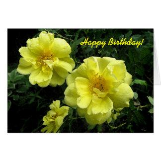 Yellow Roses Birthday Card