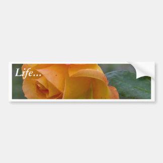 Yellow Roses Dew Petals Bumper Stickers