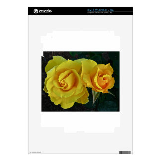 Yellow Roses Floating In Space iPad 2 Decal