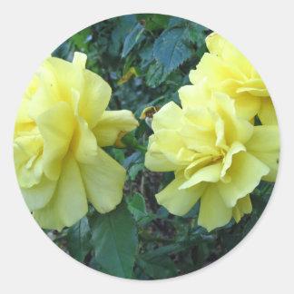 Yellow Roses Flower Sticker