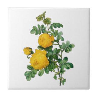 Yellow Roses Illustration Tile