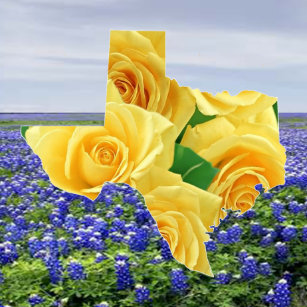 Texas Bluebonnet Pillows Decorative Throw Pillows Zazzle