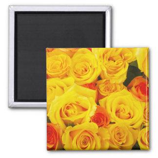 Yellow Roses Paris 2 Inch Square Magnet
