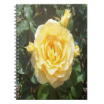 Yellow Roses Photo Notebook Notebook