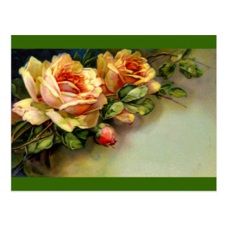 Yellow Roses Post Cards