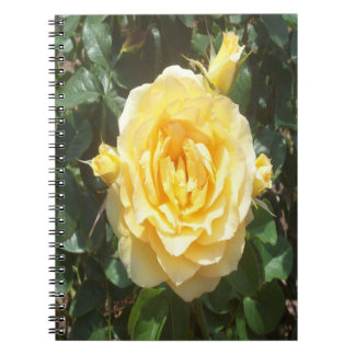 Yellow Roses Spiral Photo Notebook