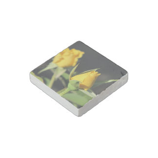 Yellow Roses Stone Magnet