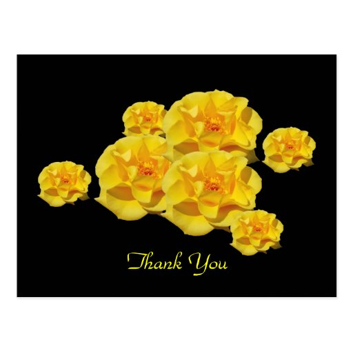 Yellow Roses thank you postcard