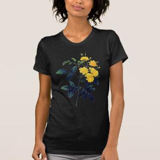 Yellow Rosier de Bancks by Pierre Joseph Redoute T-Shirt