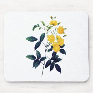 Yellow Rosier de Bancks de Pedro José Redoute Alfombrillas De Raton