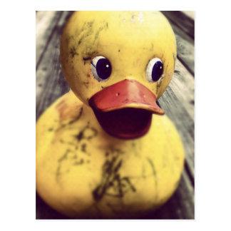 Yellow Rubber Ducky Needs a Bath! Post Card