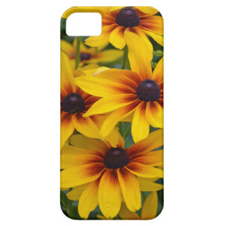 Yellow rudbeckia flowers in bloom iPhone SE/5/5s case