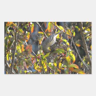 Yellow Rumped Warbler 11 Rectangular Sticker