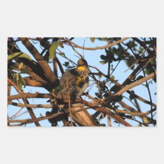 Yellow Rumped Warbler 1 Rectangular Sticker