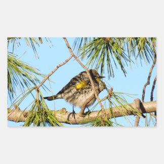 Yellow Rumped Warbler 3 Rectangular Sticker