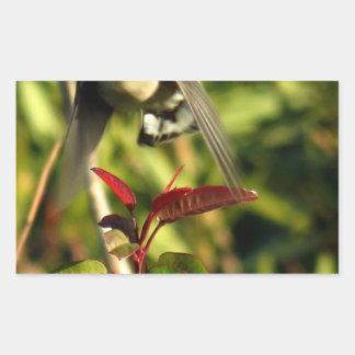 Yellow Rumped Warbler 5 Rectangular Sticker