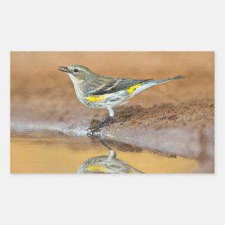 Yellow-Rumped Warbler (Dendroica Coronata) Rectangular Sticker