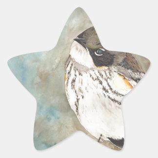 Yellow-rumped Warbler Star Sticker