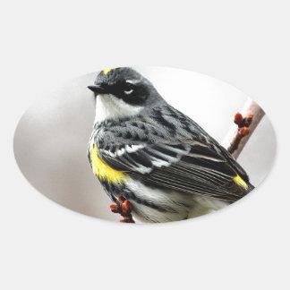 Yellow-Rumped Warbler Oval Sticker