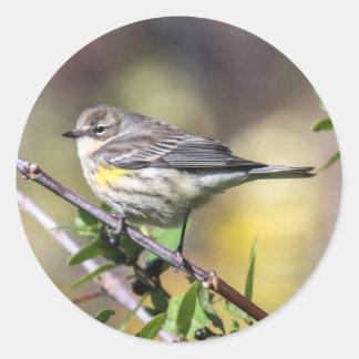 Yellow-rumped Warbler Round Sticker