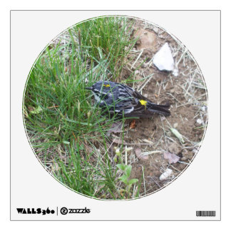 Yellow Rumped Warbler Wall Decal