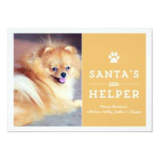 Yellow Santa's Helper- Pet Photo Holiday Cards
