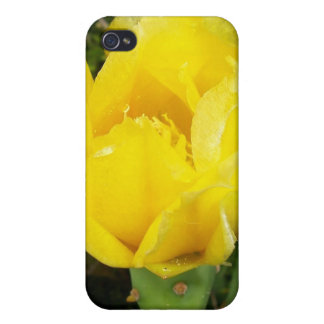 Yellow Satin Blossom iPhone 4 Cases