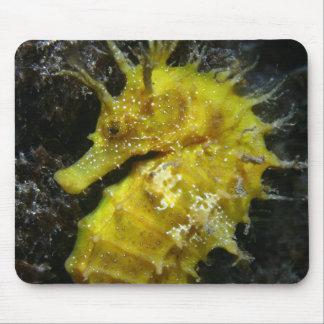 Yellow Seahorse | Hippocampus Guttulatus Mouse Pad
