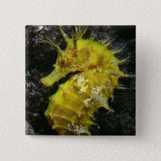 Yellow Seahorse | Hippocampus Guttulatus Pinback Button