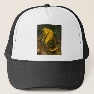 Yellow Seahorse Trucker Hat