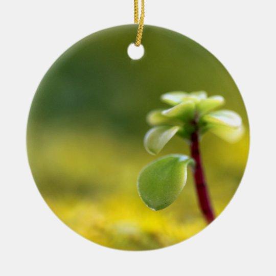 Yellow Sedum Ceramic Ornament