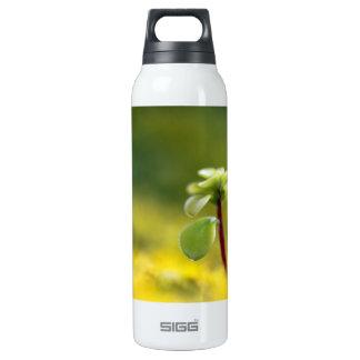 Yellow Sedum Thermos Bottle