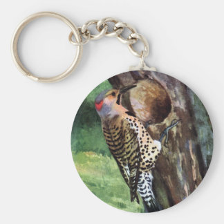Yellow-shafted Flicker and Tree Cavity Keychain
