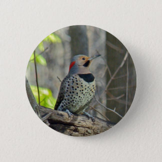 Yellow-Shafted Flicker Coordinating Items Button