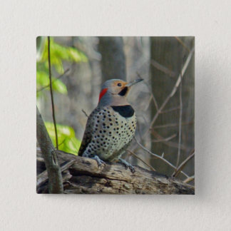 Yellow-Shafted Flicker Coordinating Items Pinback Button