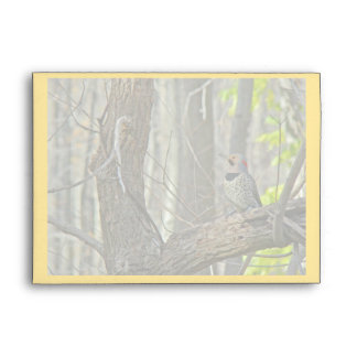 Yellow-Shafted Flicker Woodpecker Items Envelope