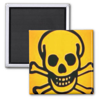 yellow skull and cross bones magnet