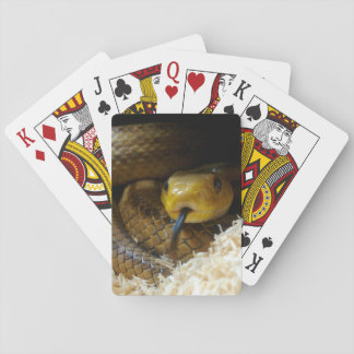 Yellow Snake Playing Cards