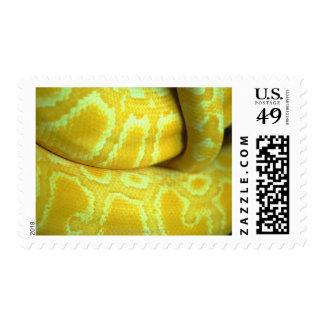 Yellow snakeskin postage
