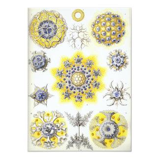 Yellow Spores Card