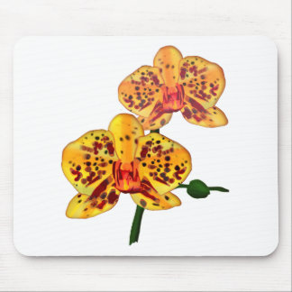 Yellow Spotted Phalaenopsis Orchids Mouse Pad