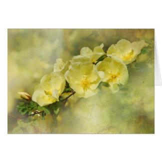 Yellow Spring Card