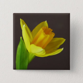 Yellow Spring Daffodil Flower Closeup Pinback Button