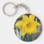 Yellow Spring Daffodil Key Chains
